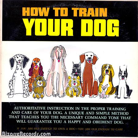 traindog
